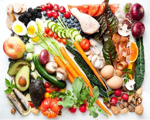 Paleo Diet Recipes